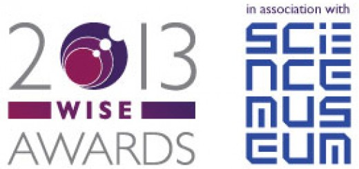 2013 WiSE awards