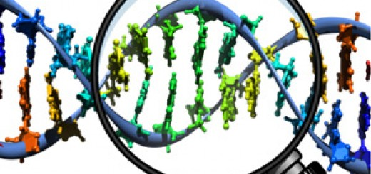 DNA search